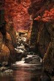 Het overweldigen van etherisch landschap van diepe opgeruimde kloof met rotsmuren Royalty-vrije Stock Foto