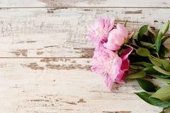 Het overweldigen van roze pioenen op witte lichte rustieke houten achtergrond Exemplaar ruimte, bloemenkader Wijnoogst, nevel het Royalty-vrije Stock Fotografie