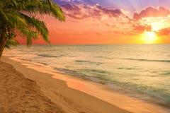 Het overweldigen van tropisch strand bij zonsopgang royalty-vrije stock foto