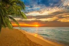 Het overweldigen van tropisch strand bij zonsopgang stock fotografie