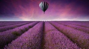 Het overweldigende landschap van het lavendelgebied met hete luchtbal Stock Foto's