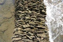 Het overzees drijft bijeen Stock Foto