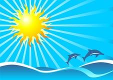 Het overzees en de dolfijnen van de zon Stock Foto