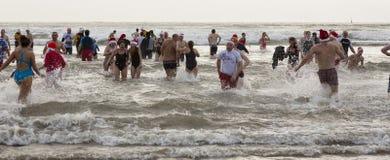 Het overzees van de winter zwemt Stock Afbeelding