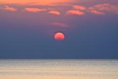 Het overzees van de zonsondergang en enige vogel Royalty-vrije Stock Foto's