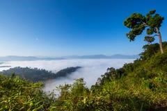 Het overzees van mist Stock Foto's