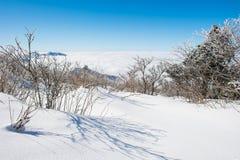 Het Overzees van Mist, Landschap in de winter Royalty-vrije Stock Foto