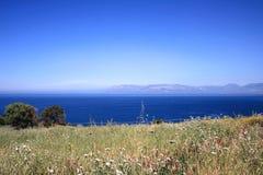 Het overzeese landschap van het gebied en stock foto's