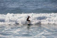 Het overzeese surfen Royalty-vrije Stock Foto's