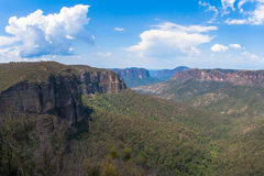 Het Overzien van de Bossen van de Vallei van de Klippen van bergen Royalty-vrije Stock Foto's