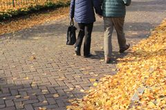Het paar, de mens en de vrouw lopen op de weg in het dorp Zuidland in de herfst stock afbeeldingen