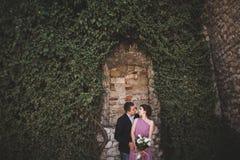 Het paar die van het luxehuwelijk en op de schitterende installaties koesteren kussen als achtergrond, holt dichtbij oud kasteel  Stock Foto