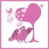 Het paar fantastische duiven van de huwelijkskaart Royalty-vrije Stock Foto's