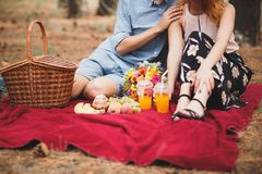 Het paar heeft een picknick op de rode plaid met verschillende vruchten stock afbeelding