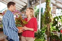 Het paar koopt samen het tuinieren in stock afbeeldingen