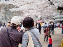 Het paar neemt selfie dichtbij Somei Yoshino Sakura, het Kasteel van Nagoya, Japan royalty-vrije stock foto's