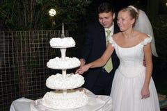 Het paar scherpe cake van de jonggehuwde Stock Fotografie