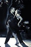 Het paar van de dans Stock Afbeelding