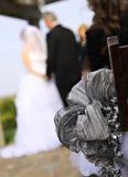 Het paar van de jonggehuwde Stock Afbeeldingen