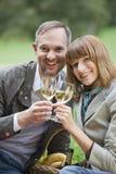Het paar van de liefde het drinken champagne Royalty-vrije Stock Fotografie