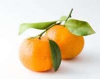 Het Paar van de mandarijn Stock Foto's