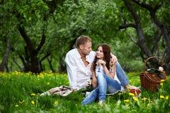 Het paar van Enamoured op picknick Stock Foto