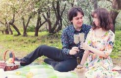 Het paar van het de lentelandschap in picknick van de liefde de openluchtboom Stock Foto