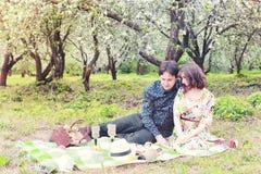 Het paar van het de lentelandschap in picknick van de liefde de openluchtboom Stock Foto's