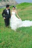 Het paar van het huwelijk Stock Afbeelding