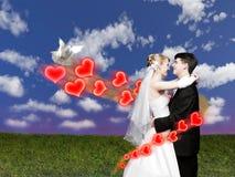Het paar van het huwelijk met duif op weidecollage Stock Afbeelding