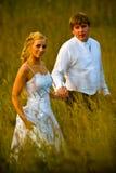 Het paar van het huwelijk op grasrijk gebied royalty-vrije stock afbeelding