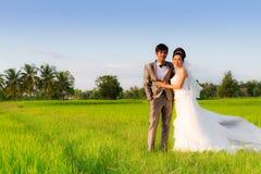 Het paar van het Huwelijk van Azië Royalty-vrije Stock Afbeelding
