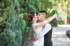 Het paar van huwelijksomhelzingen Stock Foto's