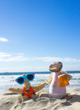 Het Paar van Shell op Vakantie Royalty-vrije Stock Foto's