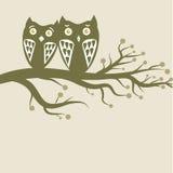 Het paar van uilen Stock Afbeelding