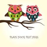 Het paar van uilen in liefde Stock Foto's