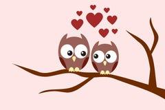 Het paar van uilen in liefde Stock Foto