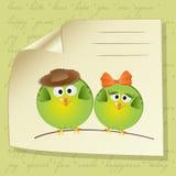 Het paar van vogels in liefde Stock Fotografie