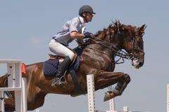 Het paard dat toont springt Stock Afbeelding