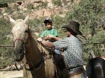 Het paard drijft bij Nationaal Park Zion bijeen Royalty-vrije Stock Afbeelding