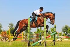 Het paard en de ruiter van de baai over een sprong Royalty-vrije Stock Foto's