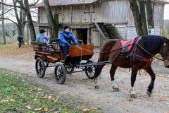 Het paard loopt in het park in het landgoed van Telling Leo Tolstoy in Yasnaya Polyana in Oktober 2017 royalty-vrije stock fotografie