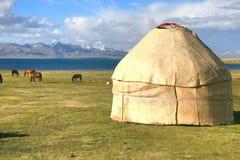 Het paard rond ger kamp in een grote weide bij Lied kul meer, Naryn van Kyrgyzstan stock foto