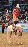 Het paard toont Royalty-vrije Stock Afbeeldingen