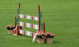 Het paard toont het springen bij een grote gebeurtenis Stock Fotografie