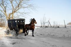 Het paard van Amish en met fouten royalty-vrije stock foto