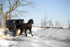 Het paard van Amish en met fouten royalty-vrije stock foto's