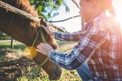 Het paard van de meisjeknuffel stock fotografie