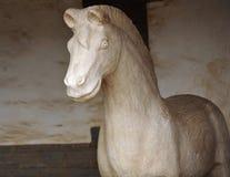 Het paard van de steen Royalty-vrije Stock Afbeelding