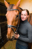 Het paard van de teugel Stock Foto's